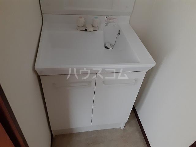 ルミネヤシマ大和 302号室の洗面所