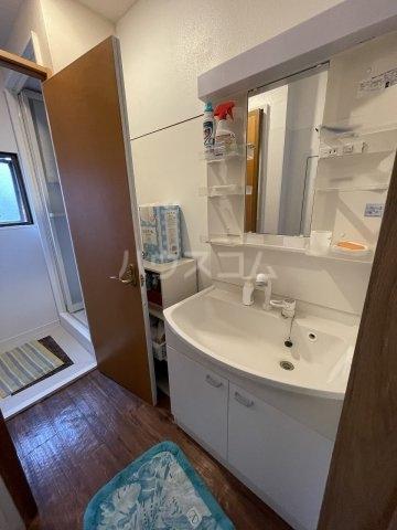 豊田屋ビル 303号室の洗面所