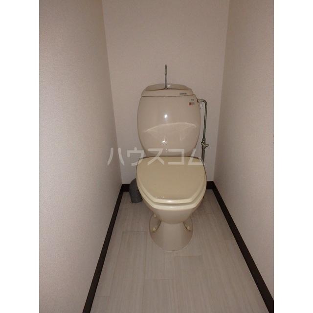 コンドーハイツ 203号室のトイレ