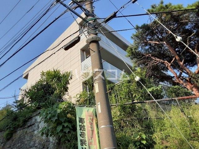 ロイヤルメゾン松ヶ丘 303号室の外観