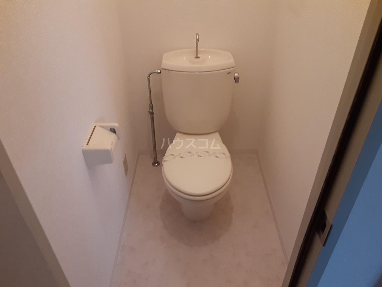 ロイヤルメゾン松ヶ丘 303号室のトイレ