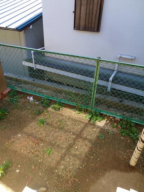 那須住宅 12号室の庭