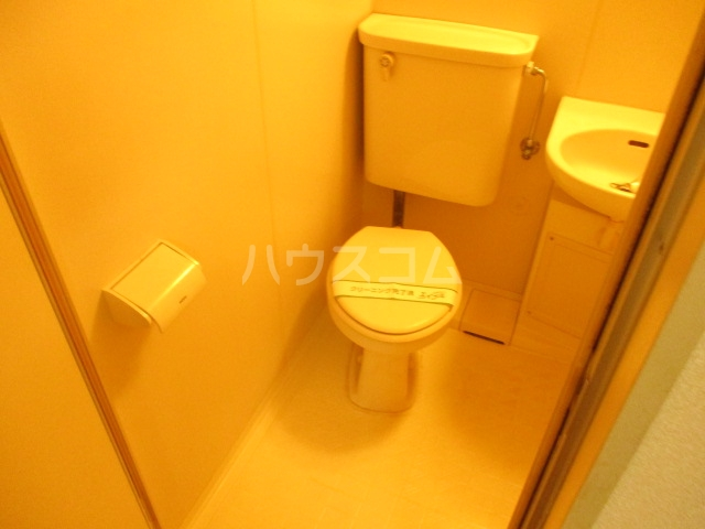 ドリームハウス末広 202号室のトイレ