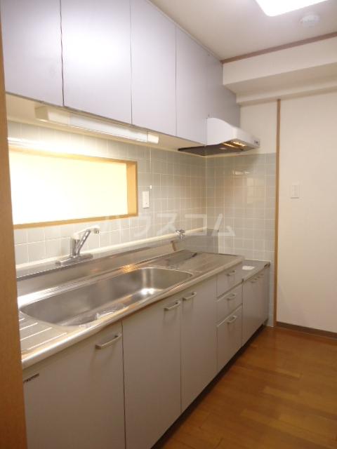 ベルテ相川 303号室のキッチン