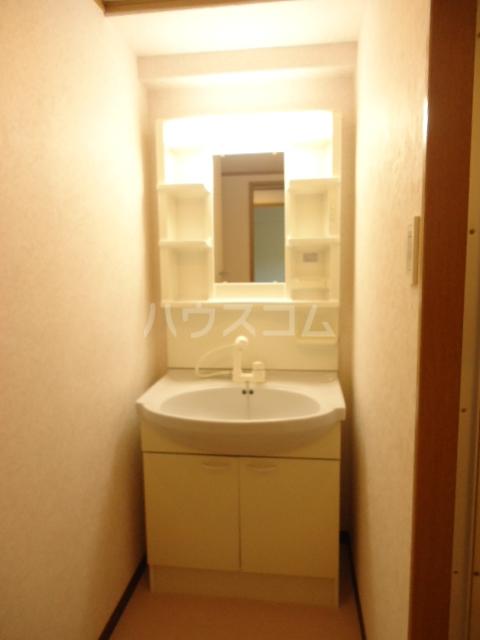 ベルテ相川 303号室の洗面所
