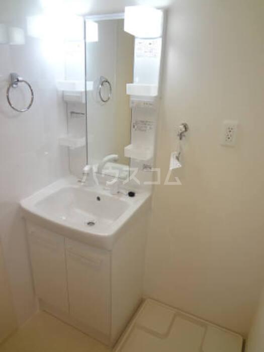 ブリックス 101号室の洗面所