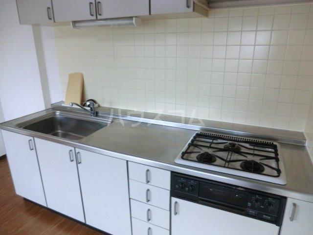 ティエスビル 00202号室のキッチン