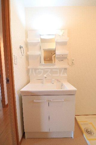 メープルヒルズ・ハイブリッジ 101号室の洗面所