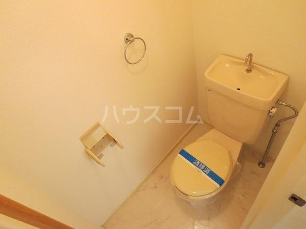 コーブサンクチュアリ 203号室のトイレ