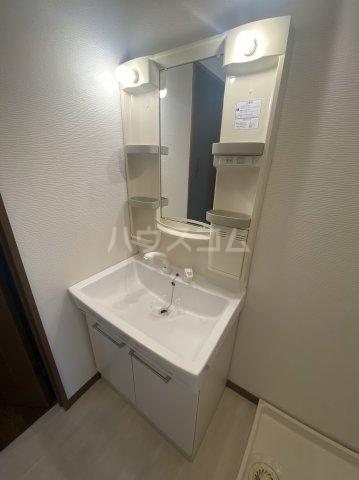 グリーンコート 101号室の洗面所