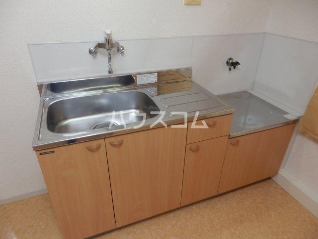 ビラ三秋 202号室のキッチン