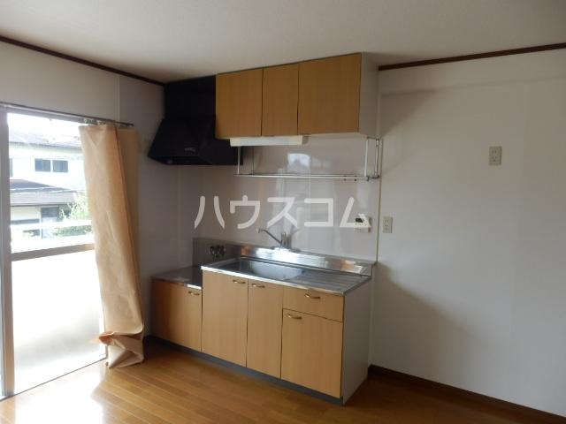ハイパーク桃山 2G号室のキッチン