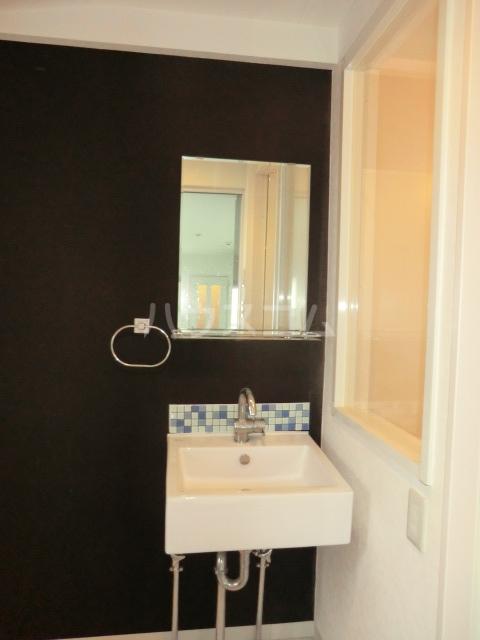 サザンクロス 302号室の洗面所