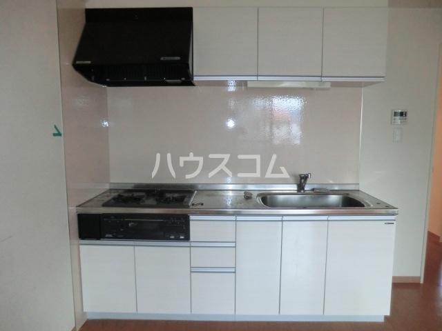 ヴィラージュ砂口 202号室のキッチン
