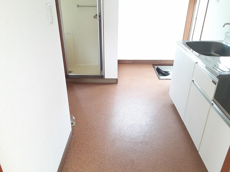 コーポ加藤 203号室の景色