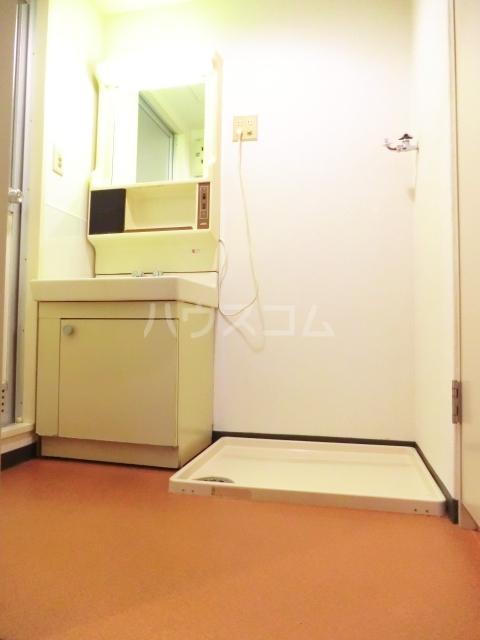 シャトー所沢 00303号室の洗面所