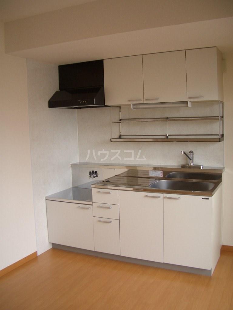 メディオ初生壱番館 201号室のキッチン