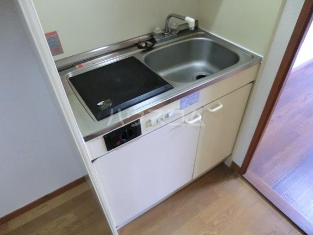 セントラルハイツ堀田 208号室のキッチン