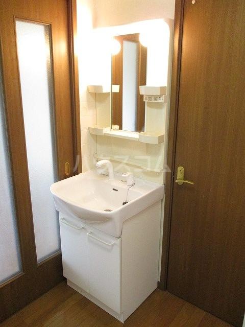 ヒルズ北山 101号室の洗面所