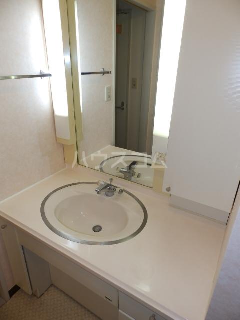 メゾンうぶすな 102号室の洗面所