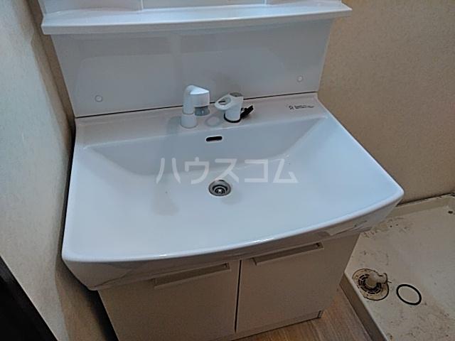 スリーシャイン大磯 501号室の洗面所