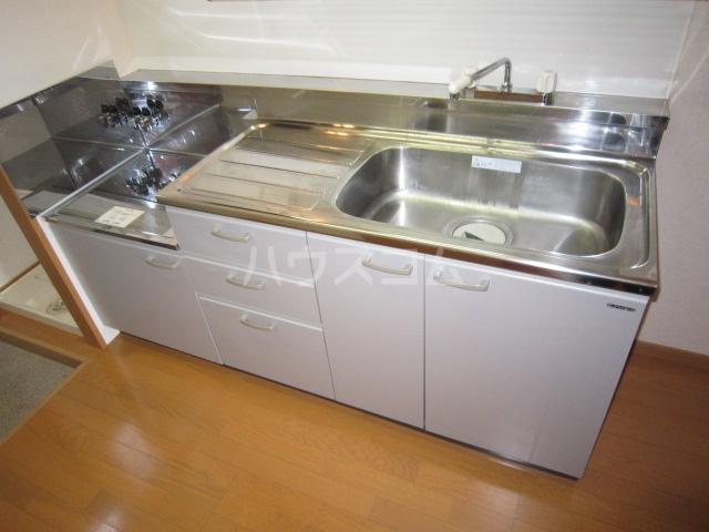カニス高石神 205号室のキッチン