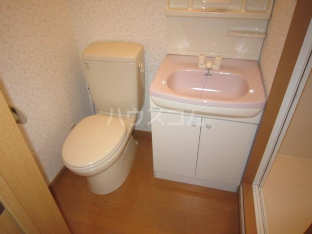 カニス高石神 205号室の洗面所