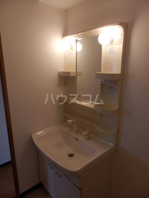 メゾンドラピュタⅡ 201号室の洗面所
