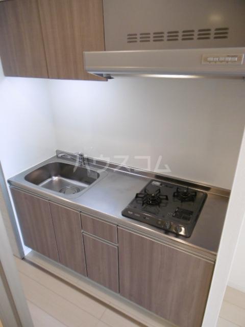 リブリ・TATSUMI 305号室のキッチン