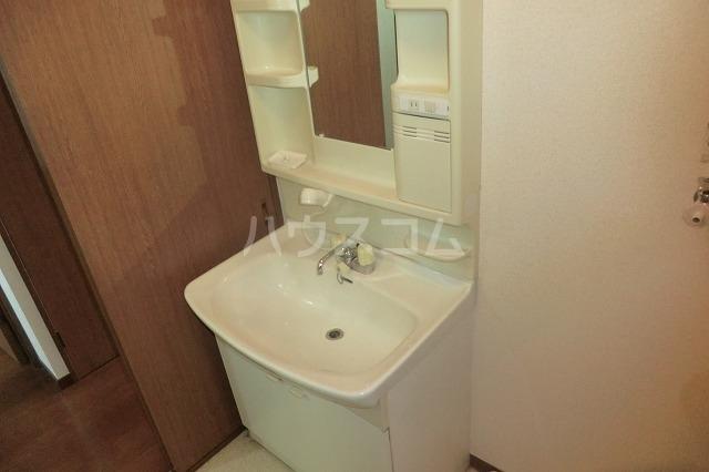 サイレントパレス矢曽根 304号室の洗面所