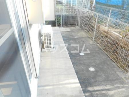 サニーモール 参番館 103号室の庭