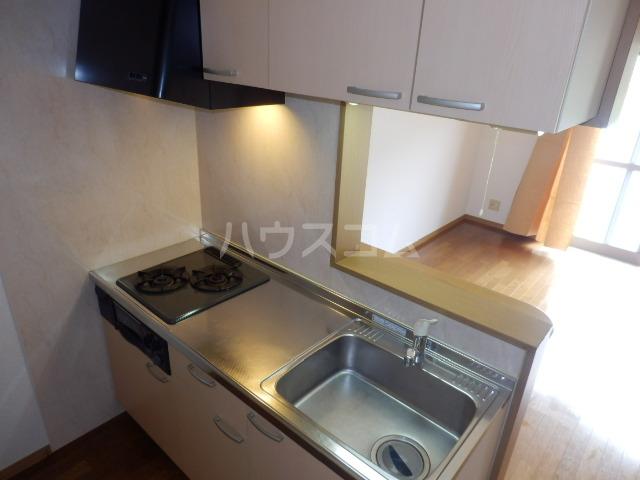 シャルモン・ナポールⅡ 205号室のキッチン